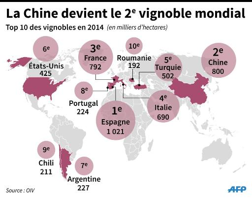 chine vignoble