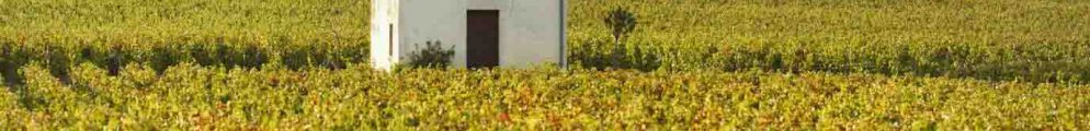 Encheres grands vins Bourgogne octobre 2017 iDealwine